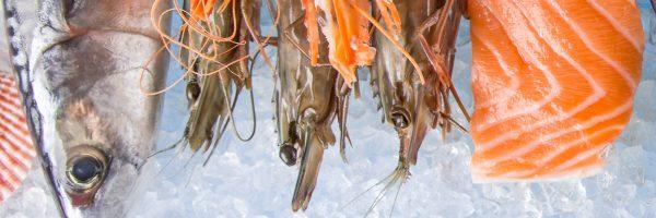 Commercializzazione dei prodotti ittici: tempi duri per chi truffa!
